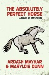 The Absolutely Perfect Horse - Ardath Mayhar, Mary Lois Dunn