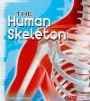 The Human Skeleton (Fact Finders: Anatomy Class) - Jody Sullivan Rake