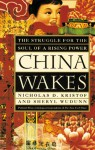 China Wakes: The Struggle For The Soul Of A Rising Power - Nicholas D. Kristof, Sheryl WuDunn
