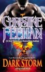 Dark Storm (Dark Carpathian, # 23) - Christine Feehan