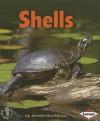 Shells - Jennifer Boothroyd