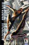 Daredevil/Spider-Man - Paul Jenkins, Tom Palmer