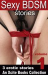 Sexy BDSM Stories - Volume One - An Xcite Books Collection - Rachel Kramer Bussel, Bimbo Ross, Alex Severn