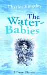 The Water Babies: A Fairy Tale For A Land Baby - Charles Kingsley