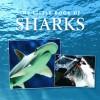 Little Book of Sharks - Ian Welch, Louise Malo