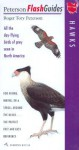Hawks: All the day-flying birds of prey seen in North America - Roger Tory Peterson