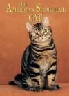 The American Shorthair Cat - Joanne Mattern