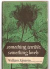 Something terrible, something lovely - William Sansom