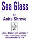 Sea Glass: A Novel a Novel - Anita Shreve