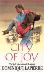 City of Joy - Dominique Lapierre