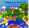 What God Made: The Story of Creation - Allia Zobel Nolan, Luanda Rinaldo