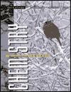 Chemistry, a First Course - Jacqueline Kroschwitz, Melvin Winokur