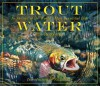 Trout Water: In Pursuit of the World's Most Beautiful Fish - Jim Rowinski, Nick Lyons