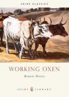 Working Oxen - Martin Watts