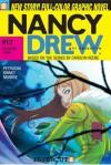 Doggone Town (Nancy Drew Girl Detective: Graphic Novels, #13) - Stefan Petrucha, Sarah Kinney, Sho Murase