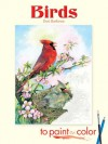 Coloring Book: Birds to Paint or Color - NOT A BOOK