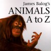 James Balog's Animals A to Z - James Balog