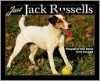 Just Jack Russells - Steven Smith, Dusan Smetana