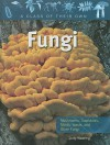 Fungi: Mushrooms, Toadstools, Molds, Yeasts, and Other Fungi (A Class of Their Own) - Judy Wearing