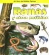 Ranas y Otros Anfibios (Que Tipo De Animal Es?) - Bobbie Kalman