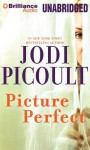 Picture Perfect - Sandra Burr, Bruce Reizen, Jodi Picoult
