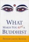What Makes You Not A Buddhist - Dzongsar Jamyang Khyentse