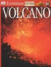Volcano (Eyewitness) - Susanna van Rose