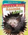 Animal Top Tens (Pack A of 4 Hardback) - Anita Ganeri