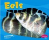 Eels - Jody Sullivan Rake