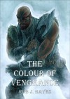 The Colour of Vengeance - Rob J. Hayes