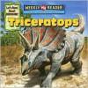 Triceratops - Joanne Mattern, Jeffrey Magniat
