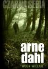 Wody wielkie - Arne Dahl