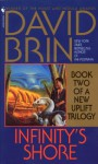 Infinity's Shore (Audio) - David Brin, George Wilson