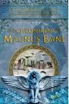 Die Chroniken des Magnus Bane - Maureen Johnson, Sarah Rees Brennan, Ulrike Köbele, Cassandra Clare
