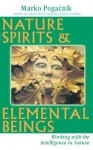 Nature Spirits & Elemental Beings: Working with the Intelligence in Nature - Marko Pogacnik