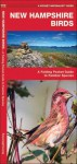 New Hampshire Birds: A Folding Pocket Guide to Familiar Species - James Kavanagh