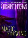 Magic in the Wind (Drake Sisters Series #1) - Christine Feehan, Eve Bianco
