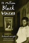 12 Million Black Voices - Richard Wright, Noel Ignatiev, David Bradley