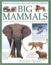 Big Mammals: The Illustrated Wildlife Encyclopedia - Rhonda Klevansky