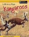 Mob of Kangaroos - Richard Spilsbury, Louise Spilsbury