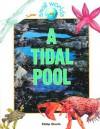 A Tidal Pool - Philip Steele