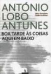 Boa Tarde às Coisas Aqui em Baixo - António Lobo Antunes