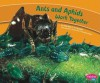 Ants and Aphids Work Together - Martha E.H. Rustad, Gail Saunders-Smith, Jackie Gai