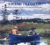 Awash in Color - Sue Welsh Reed, Carol Troyen