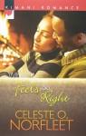 When It Feels So Right - Celeste O. Norfleet
