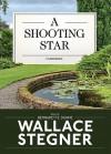 A Shooting Star (Audio) - Wallace Stegner, Bernadette Dunne