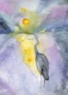 Heron Awake Notecards - Roderick MacIver