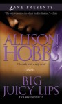Big Juicy Lips: Double Dippin' 2 - Allison Hobbs