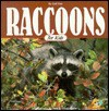 Raccoons for Kids - Jeff Fair, Alan Carey