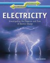 Electricity: Investigating the Presence and Flow of Electric Charge - Chris Woodford